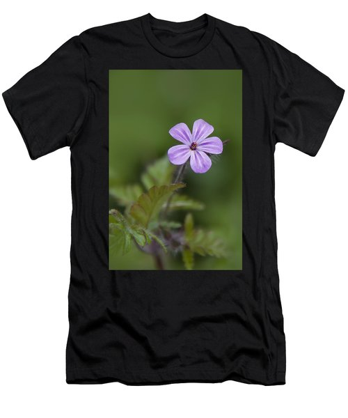 Pink Phlox Wildflower Men's T-Shirt (Athletic Fit)