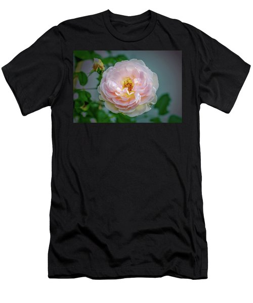 Pink Rose #c3 Men's T-Shirt (Slim Fit) by Leif Sohlman