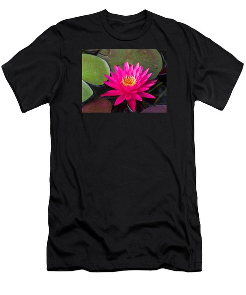 Pink Waterlily Garden Men's T-Shirt (Athletic Fit)