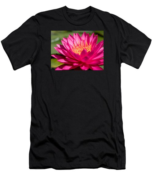 Pink Waterlily Men's T-Shirt (Athletic Fit)