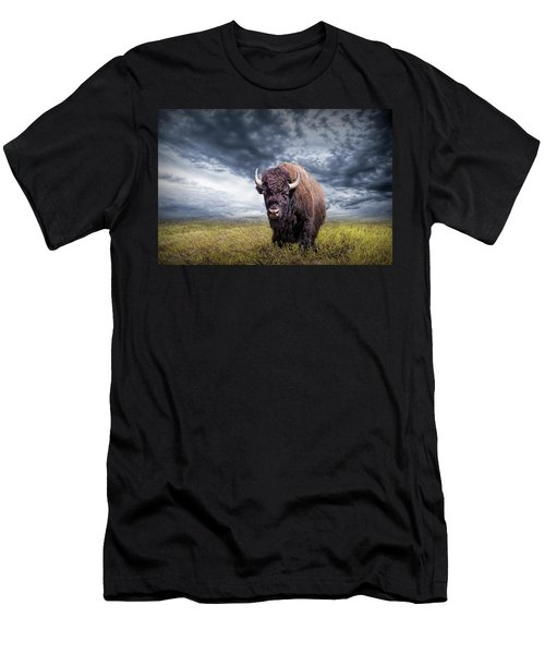 Plains Buffalo On The Prairie Men's T-Shirt (Athletic Fit)