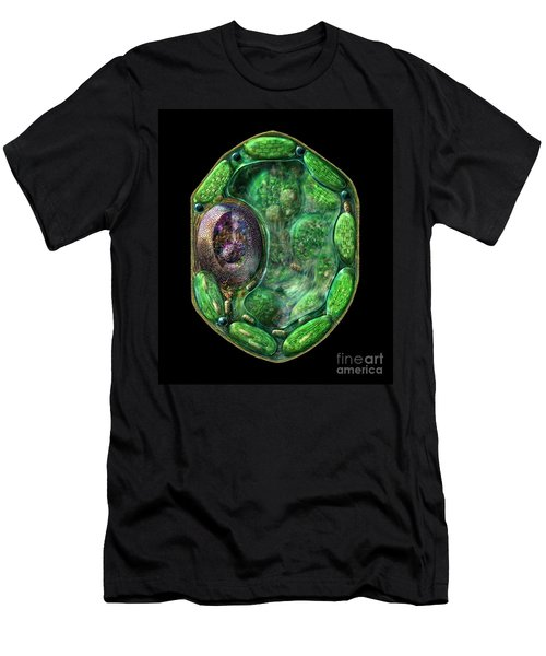 Men's T-Shirt (Slim Fit) featuring the digital art Plant Cell by Russell Kightley