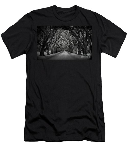 Plantation Oak Alley Men's T-Shirt (Athletic Fit)