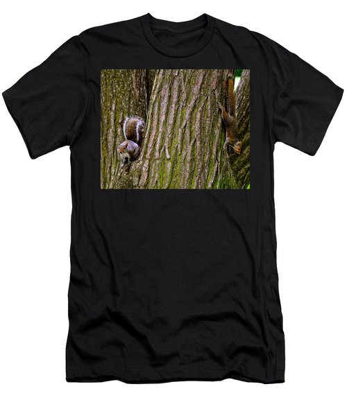 Playful Squirrels  Men's T-Shirt (Athletic Fit)