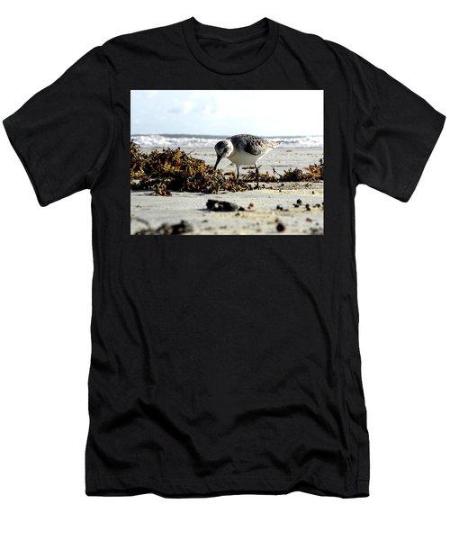 Plover On Daytona Beach Men's T-Shirt (Athletic Fit)