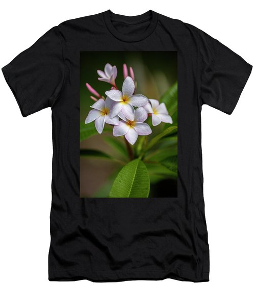Plumeria 3 Men's T-Shirt (Athletic Fit)