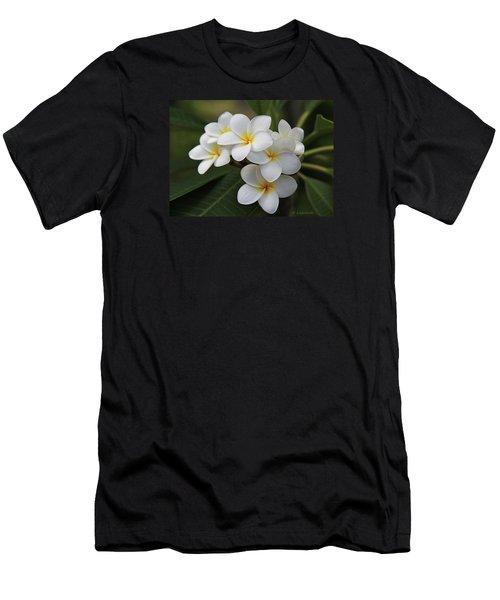 Plumeria - Golden Hearts Men's T-Shirt (Athletic Fit)