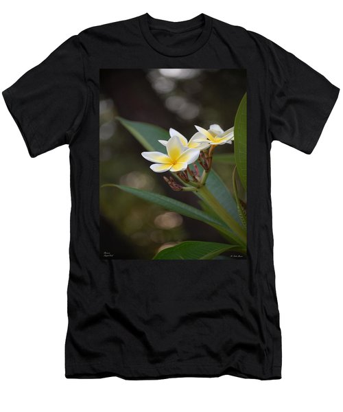 Plumeria II Men's T-Shirt (Athletic Fit)