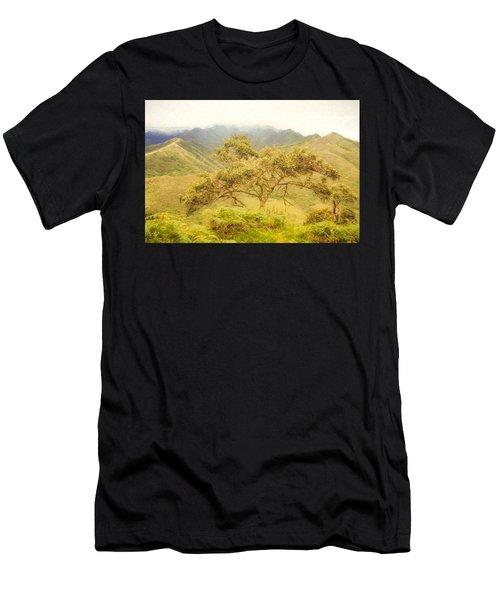 Podocarpus Tree Men's T-Shirt (Athletic Fit)