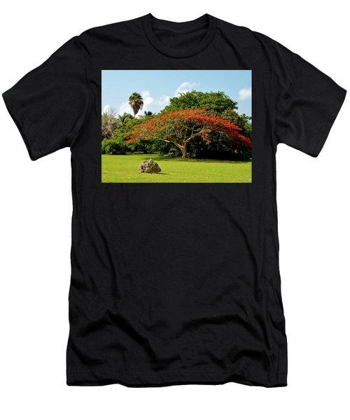 Poinciana Men's T-Shirt (Athletic Fit)