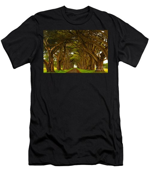 Point Reyes Cypress Tunnel Men's T-Shirt (Athletic Fit)