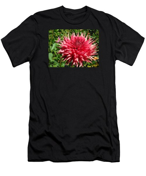 Pointed Pink Dahlia  Men's T-Shirt (Athletic Fit)