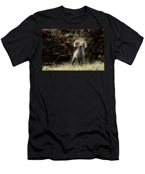 Poised Men's T-Shirt (Athletic Fit)