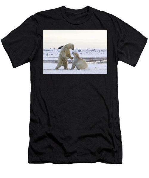 Polar Bear Play-fighting Men's T-Shirt (Athletic Fit)