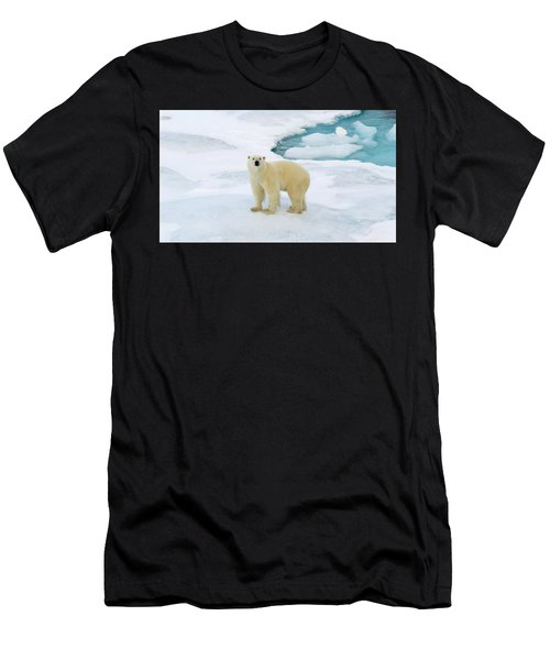 Polar Gaze Men's T-Shirt (Athletic Fit)