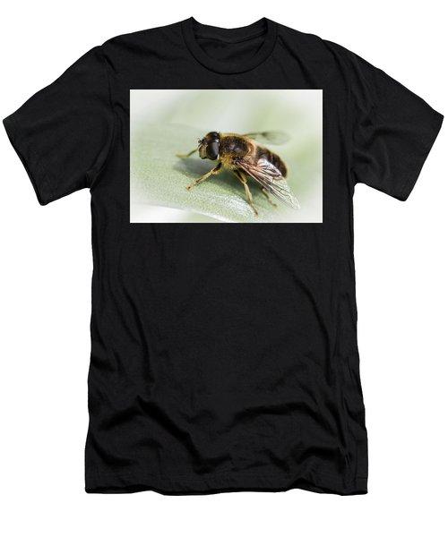 Pollen Dusted Men's T-Shirt (Athletic Fit)