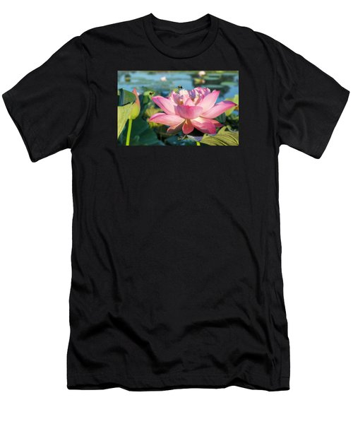 Pond Bees Men's T-Shirt (Athletic Fit)