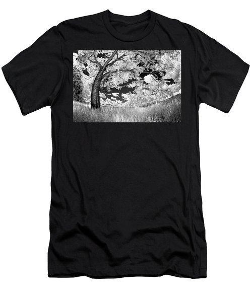 Poplar On The Edge Of A Field Men's T-Shirt (Athletic Fit)