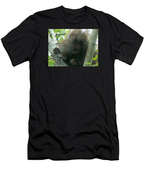 Porcupine Tree Men's T-Shirt (Athletic Fit)