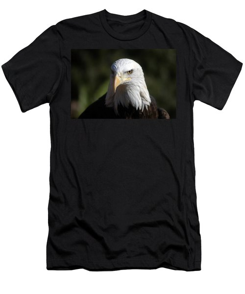 Portrait Of A Bald Eagle Men's T-Shirt (Athletic Fit)