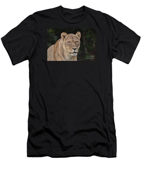 Portrait Of A Lioness II Men's T-Shirt (Slim Fit) by Jim Fitzpatrick