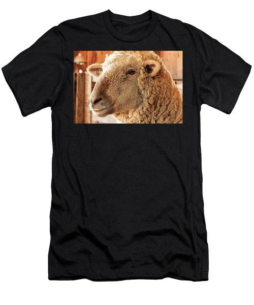 Portrait Of A Southdown Sheep Men's T-Shirt (Athletic Fit)