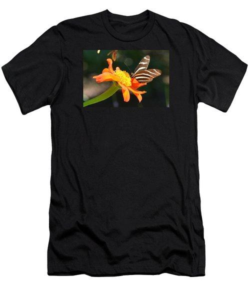 Portrait Of A Zebra Heliconia Men's T-Shirt (Athletic Fit)