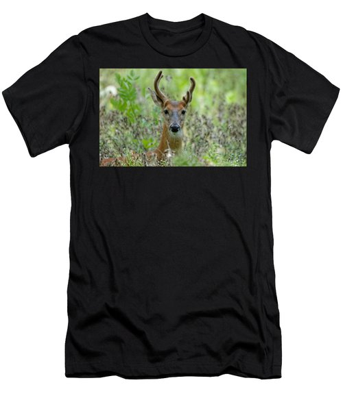 Portriat Of Male Deer Men's T-Shirt (Athletic Fit)