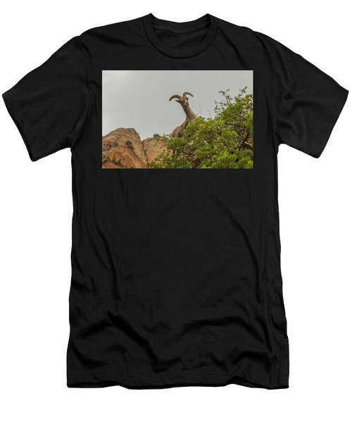 Posing For The Camera 2 Men's T-Shirt (Athletic Fit)