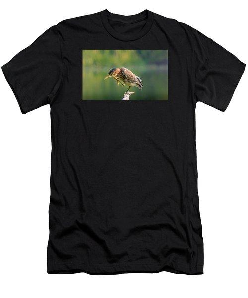 Posing Heron Men's T-Shirt (Athletic Fit)