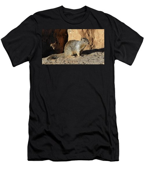Posing Squirrel Men's T-Shirt (Athletic Fit)