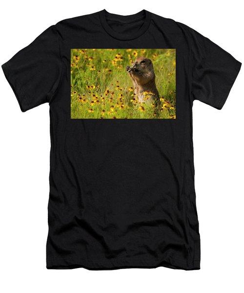 Prairie Dog Lunch Men's T-Shirt (Athletic Fit)