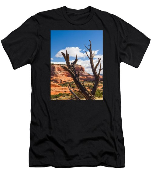 Men's T-Shirt (Athletic Fit) featuring the photograph Preserved by Daniel George