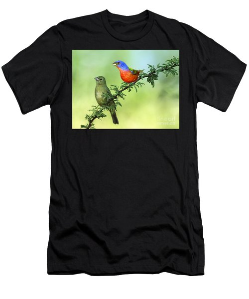 Pretty Painted Buntings Perched Men's T-Shirt (Athletic Fit)