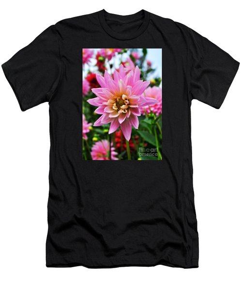 Pretty Pink Dahlia  Men's T-Shirt (Athletic Fit)