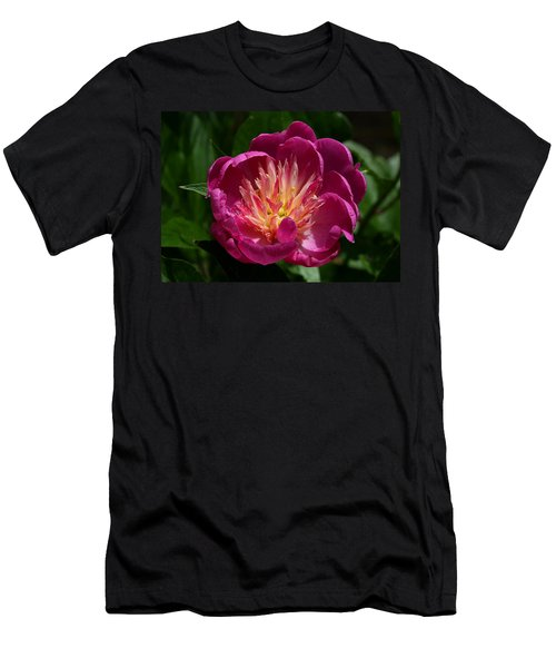 Pretty Pink Peony Flower Men's T-Shirt (Athletic Fit)