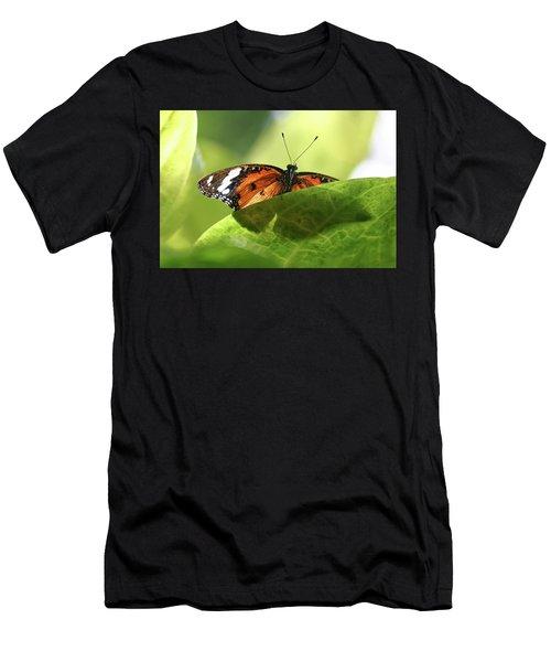 Preview - Men's T-Shirt (Athletic Fit)