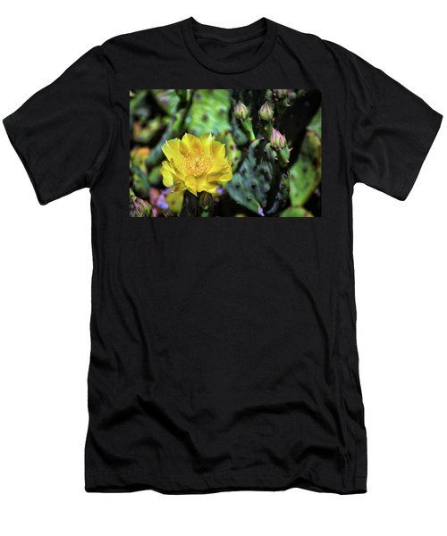 Prickly Pear Cactus Flower On Assateague Island Men's T-Shirt (Athletic Fit)