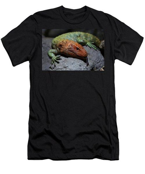 Professional Rock Taster Men's T-Shirt (Athletic Fit)
