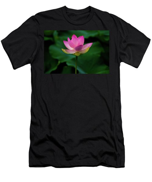 Profile Of A Lotus Lily Men's T-Shirt (Athletic Fit)