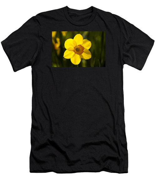 Projecting The Sun Men's T-Shirt (Athletic Fit)