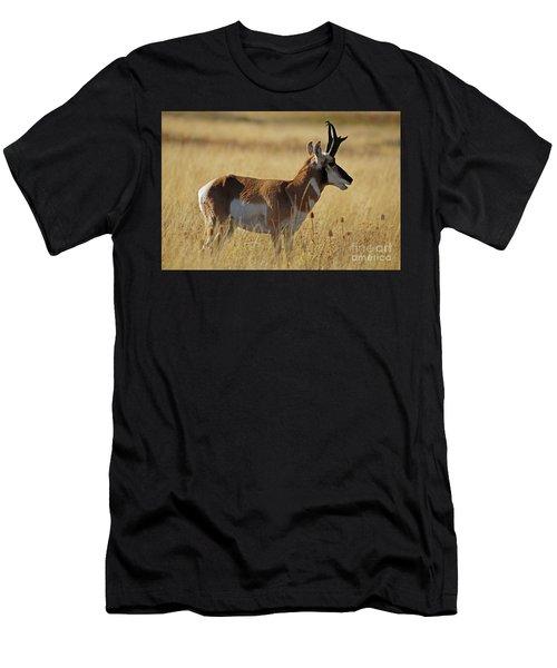 Pronghorn Antelope Men's T-Shirt (Athletic Fit)