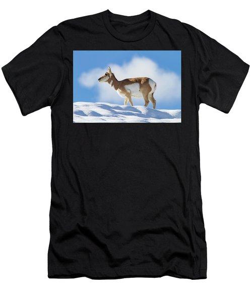 Pronghorn Doe On Snowy Ridge Men's T-Shirt (Athletic Fit)