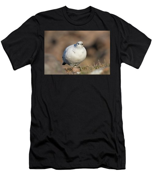 Ptarmigan Going For A Stroll Men's T-Shirt (Athletic Fit)
