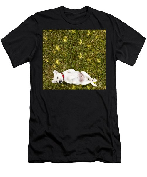 Puppy In The Grass Men's T-Shirt (Athletic Fit)