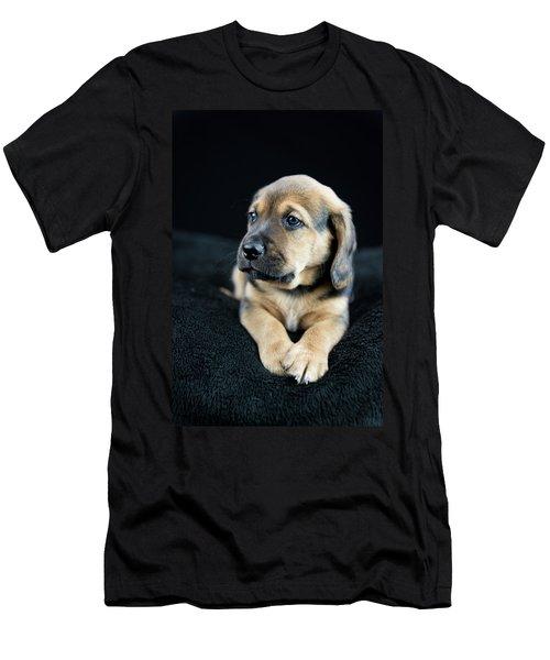 Puppy Portrait Men's T-Shirt (Athletic Fit)