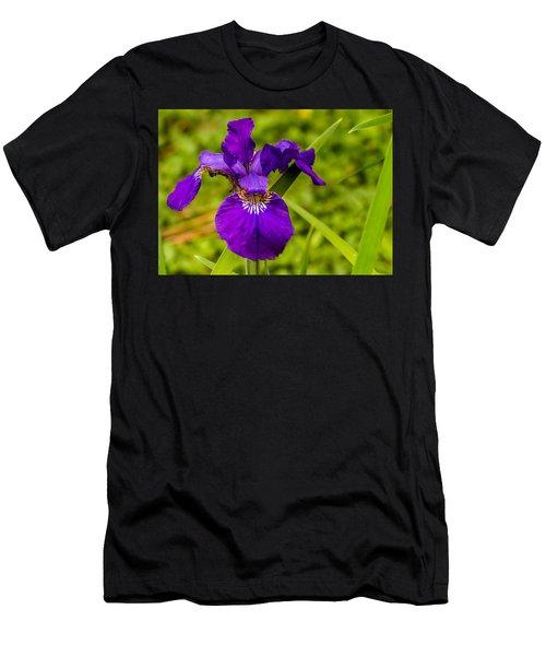 Purple Beauty Men's T-Shirt (Athletic Fit)