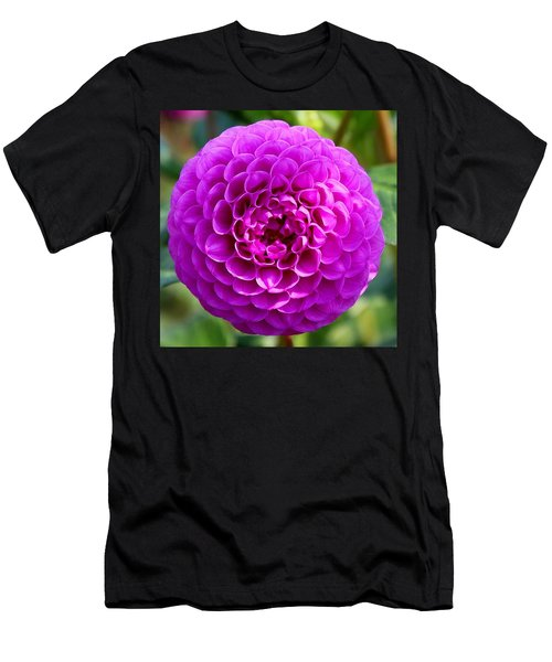 Purple Dahlia Men's T-Shirt (Athletic Fit)
