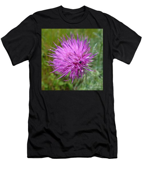 Purple Dandelions 2 Men's T-Shirt (Athletic Fit)