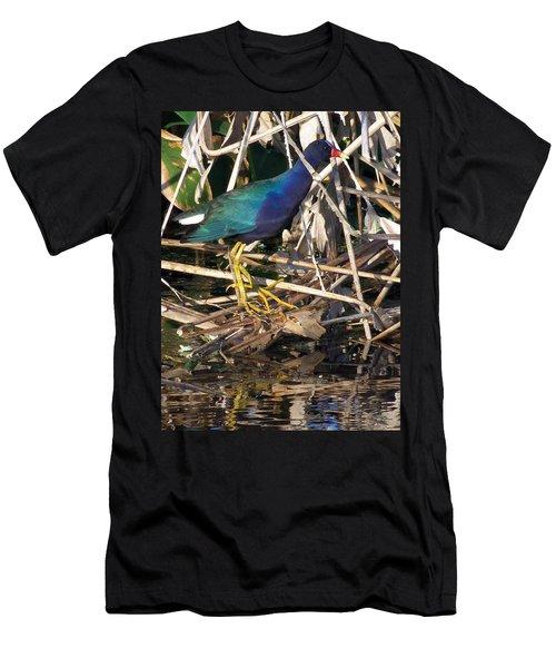 Purple Galinule  Men's T-Shirt (Slim Fit) by Chris Mercer